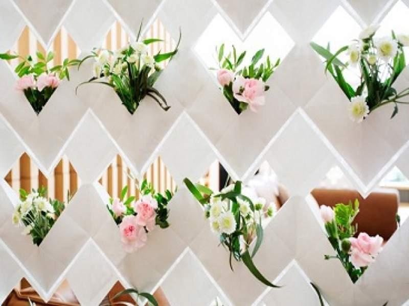 jardinagem cortina ecofriendly permite o cultivo de plantas em jardim vertical